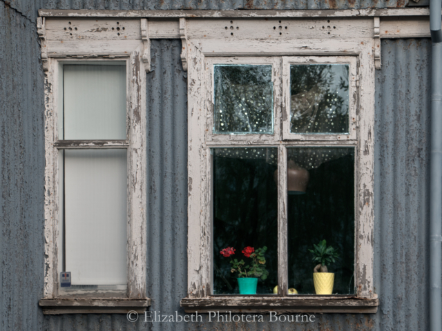 red geraniums in window of old house