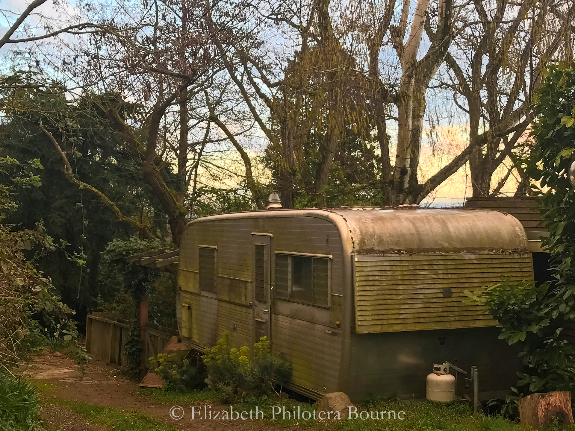 landscape of old RV in grove of trees with sunset