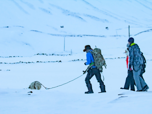A guide armed with a rifle and a bear dog leads a small group of tourists on a hike into the mountains. The guide is equipped with a flare gun and a rifle for polar bear protection.