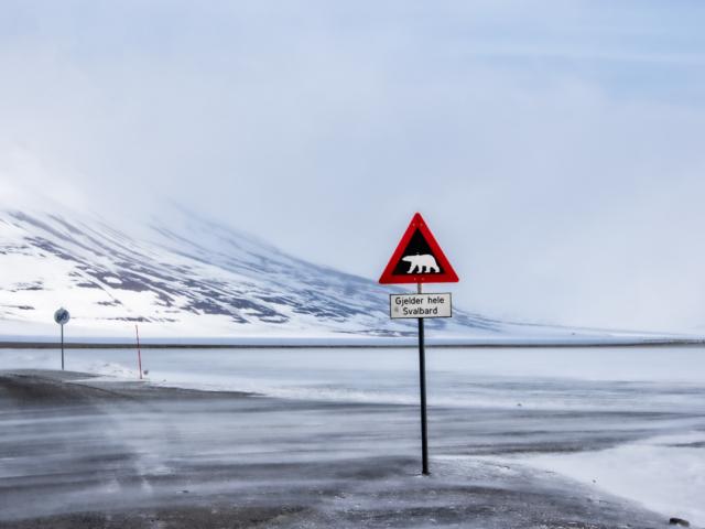 Polar bear warning sign at the edge of a lake in Longyearbyen